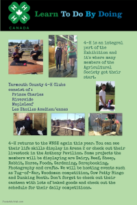 4-H Exhibition Poster 2016